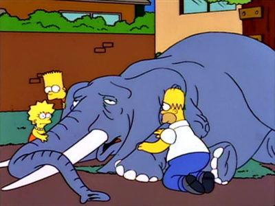A Bart Le Regalan Un Elefante